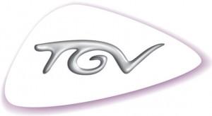 ces-messages-caches-dans-les-logos-de-grandes-marques-françaises-TGV-1